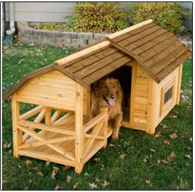 BarnDogHouse