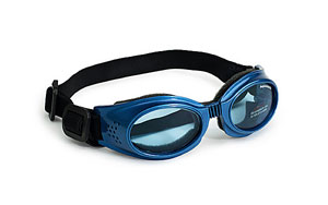doggles blue