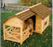 BarnDogHouse[1]